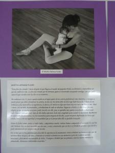 Proyecto Educativo 13